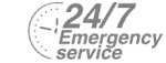 24/7 Emergency Service Pest Control in Harold Wood, Harold Hill, Noak Hill, RM3. Call Now! 020 8166 9746