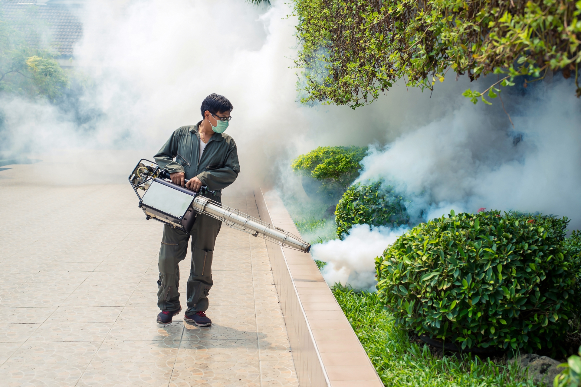 Bug Control, Pest Control in Harold Wood, Harold Hill, Noak Hill, RM3. Call Now 020 8166 9746