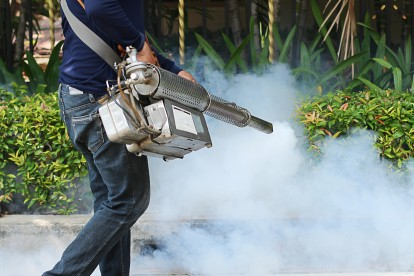 Pest Control in Harold Wood, Harold Hill, Noak Hill, RM3. Call Now 020 8166 9746